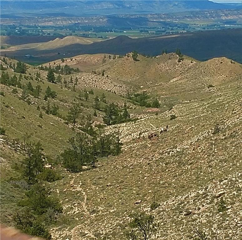 471  Pryor Mountain Road