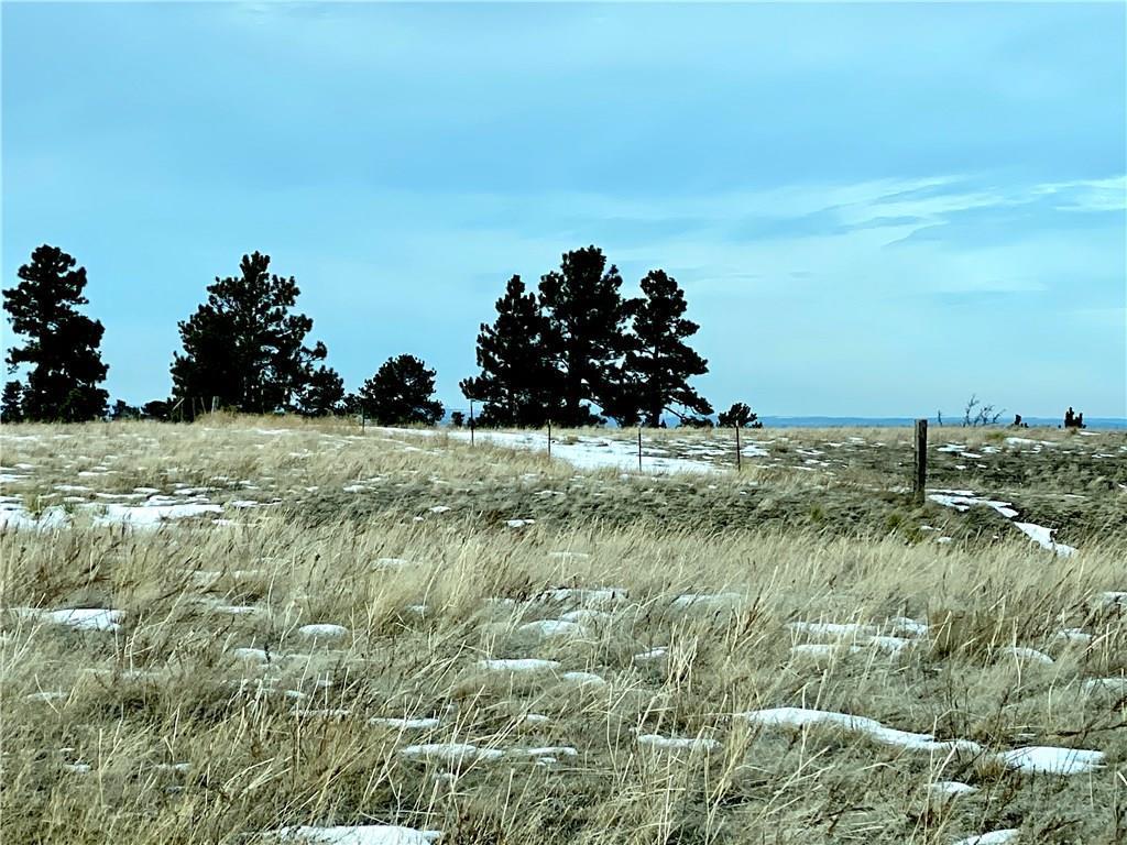 0  Yellowstone Trail