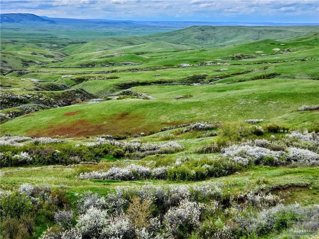 0  rotten grass creek